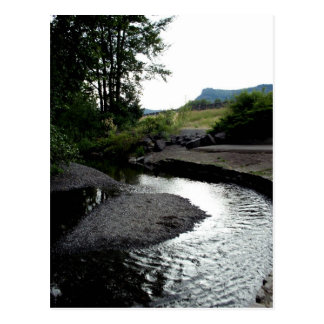 Winding Creek I Postcard