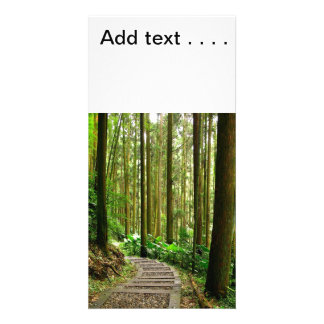 Winding Footpath in a Quiet Forest Photo Card