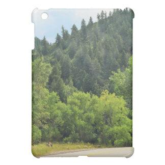Winding Mountain Road Case For The iPad Mini