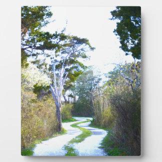 Winding Path Plaque