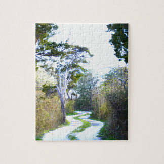 Winding Path Puzzles