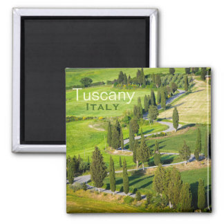 Winding road with cypresses, Tuscany text magnet