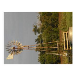 Windmill 3 Postcard