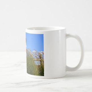 Windmill and grasses mugs