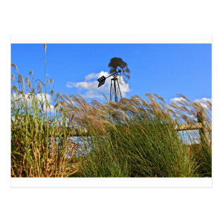 Windmill and grasses post cards