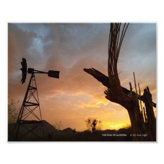 Windmill and Saguaro Cactus Skeleton at Sunset Photo Print