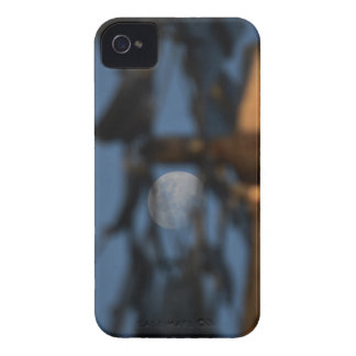 WINDMILL BLADES AND MOON AUSTRALIA iPhone 4 COVERS