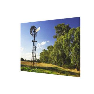 Windmill near Hume Highway, Victoria, Australia Canvas Print