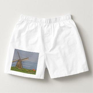 windmills of Kinderdijk world heritage site Boxers