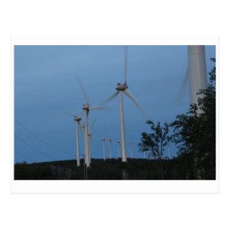 Windmills Postcard