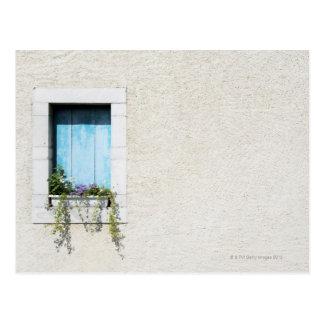 Window and window-box of flowers in plain wall postcard