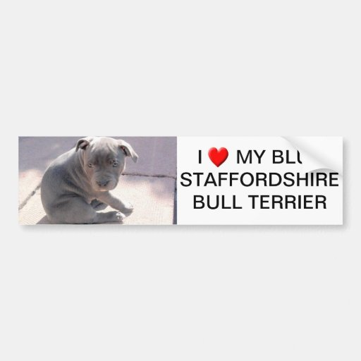 window or bumper sticker for dog lovers