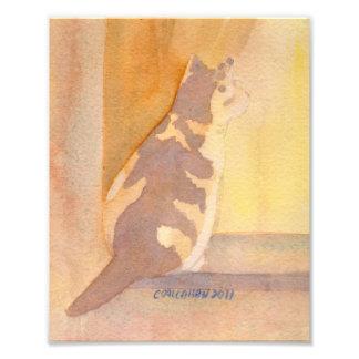 Window Sitter Art Print Photo Art