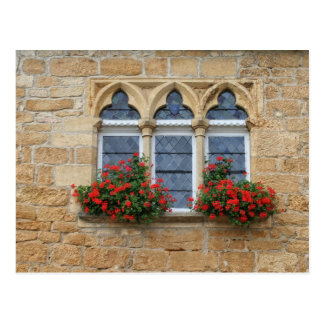 Window with flowers postcard