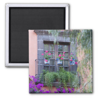 Window with geraniums and bougainvillea magnet