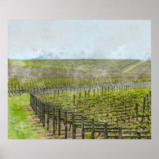 Wine and Grape  Decor