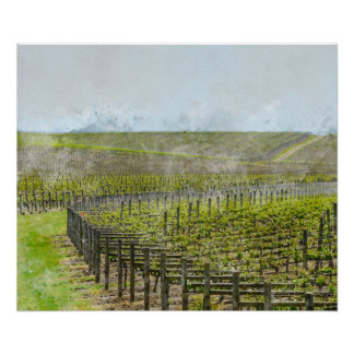 Wine and Grape  Decor Poster