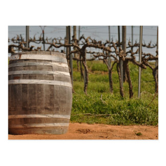 Wine Barrel and Vineyard in the Spring Postcard