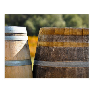 Wine Barrels in Autumn Grape Vineyard Postcard