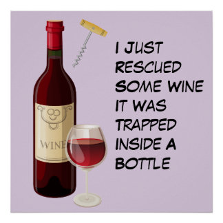 Wine bottle and glass illustration poster