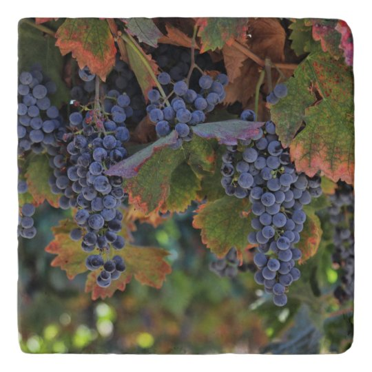 Wine Country Tuscan Decor Vineyard Trivet