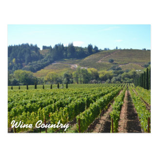 Wine Country Vintards Postcard