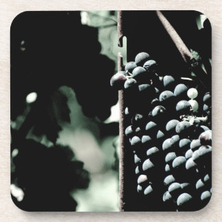 Wine Grapes Drink Coasters
