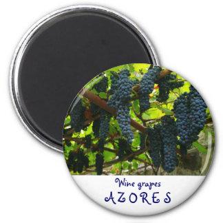 Wine grapes 6 cm round magnet