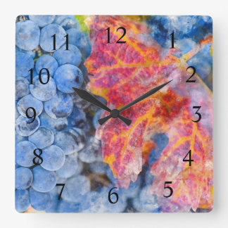 Wine Time - Red Grapes on the Vine Square Wall Clock