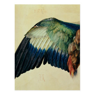 Wing of a Blue Roller, 1512 Postcard