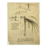 Winged Flying Machine Sketch by Leonardo da Vinci Poster