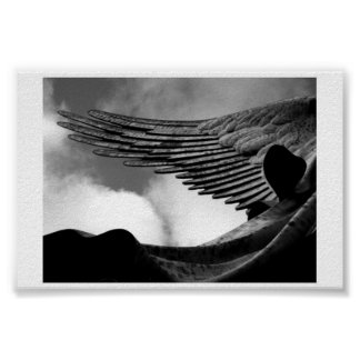 Wings above us poster