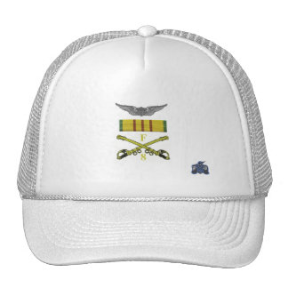 Wings and sabers mesh hat