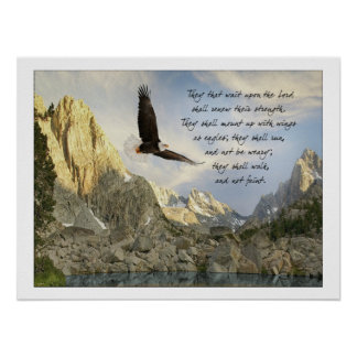 Wings As Eagles Isaiah 40:31 Poster