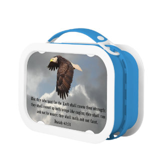 WINGS LIKE EAGLES LUNCH BOX