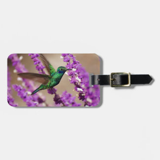 Wings of Faith Sparkling Violet-ears Hummingbird Luggage Tag