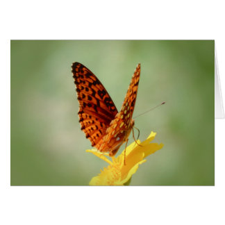Wings Up - Fritillary Butterfly Card