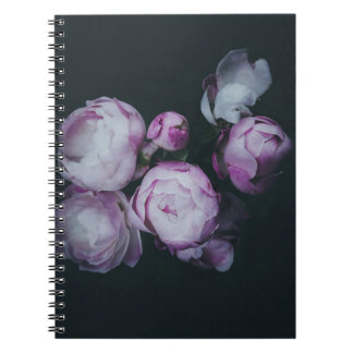 Wink Rose Buds dark background Notebook