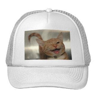 Winking Happy Ginger Cat Hats
