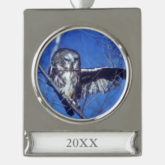 Winking owl silver plated banner ornament
