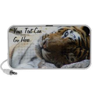 Winking Tiger Speaker System