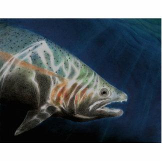 Winning Art By A. Do Grade 10 Photo Cutout