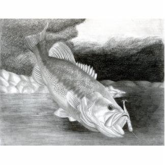 Winning art by  C. Rhodes - Grade 12 Photo Cut Out