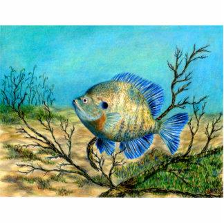 Winning art by  G. Barker - Grade 11 Photo Cutouts