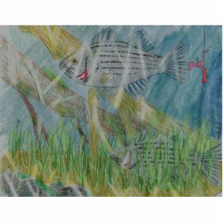 Winning Art By G. Irwin Grade 7 Acrylic Cut Out