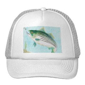 Winning artwork by E. Vance, Grade 8 Mesh Hats