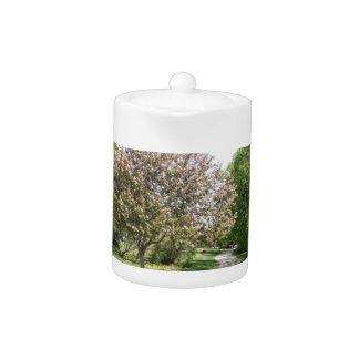Winnipeg Blossom