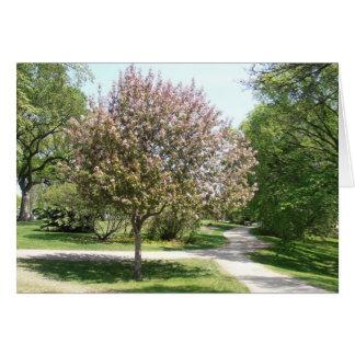 Winnipeg Blossom Card