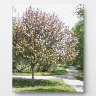 Winnipeg Blossom Plaque