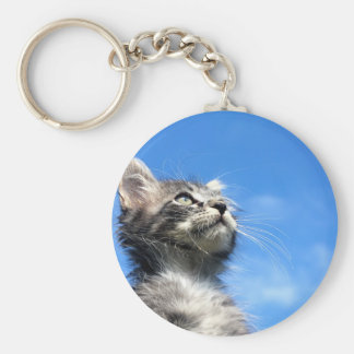 Winston the Tabby Aviator Cat Key Ring